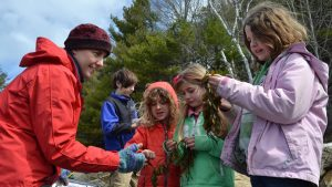 Children learning about seaweed